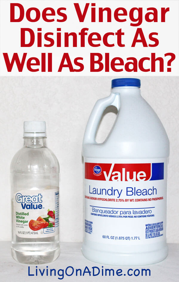 Does Vinegar Disinfect As Well As Bleach Living On A Dime